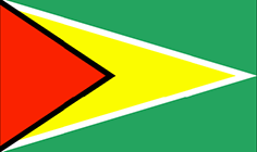 SMS gateway for Guyana